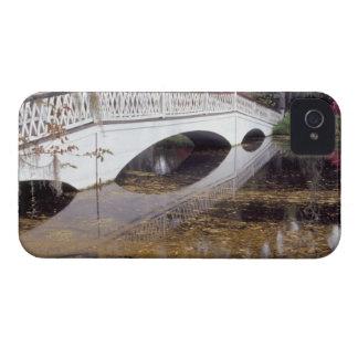 N.A., USA, South Carolina, Charleston.  Magnolia iPhone 4 Case