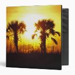 N.A., USA, South Carolina, Charleston. Sunset Vinyl Binders