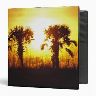 N.A., USA, South Carolina, Charleston. Sunset Binder