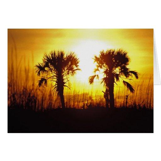 N.A., USA, South Carolina, Charleston. Sunset Greeting Card