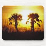 N.A., USA, South Carolina, Charleston. Sunset Mouse Pads