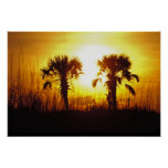 N.A., USA, South Carolina, Charleston. Sunset Poster