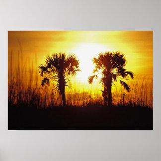 N A USA South Carolina Charleston Sunset Posters