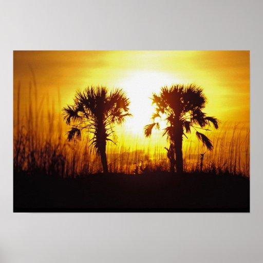 N.A., USA, South Carolina, Charleston. Sunset Posters