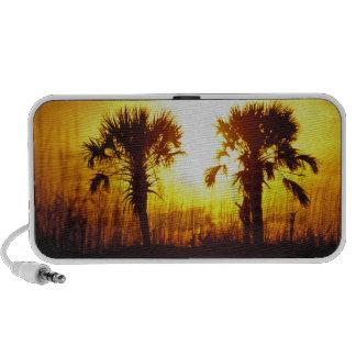 N.A., USA, South Carolina, Charleston. Sunset Mini Speaker