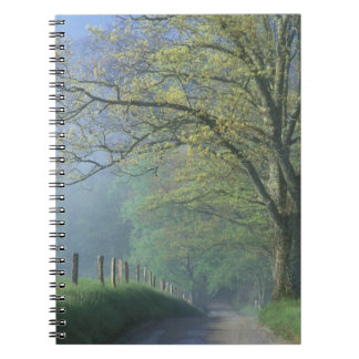 N.A., USA, Tennessee, Smokey Mts. National Park, Notebook