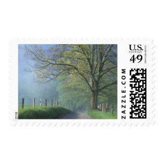 N.A., USA, Tennessee, Smokey Mts. National Park, Postage