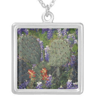 N.A., USA, Texas, Cactus surrounded by Silver Plated Necklace