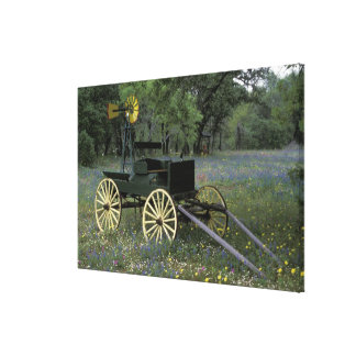 N.A., USA, Texas, Devine, Old wagon and Canvas Prints