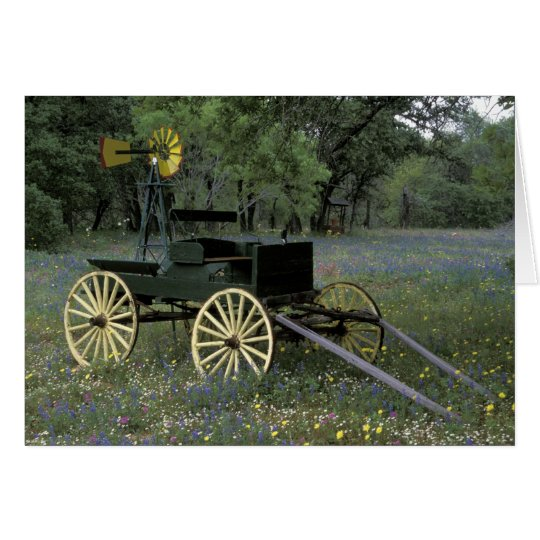N.A., USA, Texas, Devine, Old wagon and Card