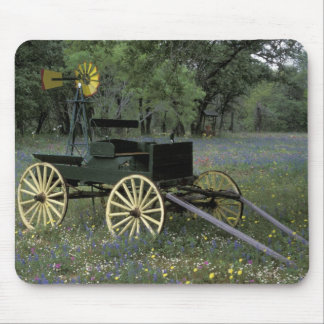 N.A., USA, Texas, Devine, Old wagon and Mousepad