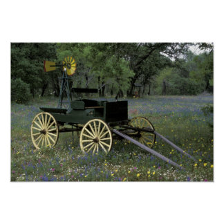 N.A., USA, Texas, Devine, Old wagon and Poster