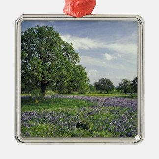 N.A, USA, Texas, Lake Buchanan, Oaks and Blue Metal Ornament