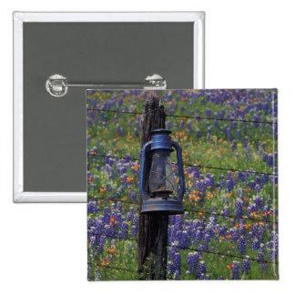 N.A., USA, Texas, Llano, Blue Lantern and Pins