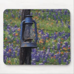 N.A., USA, Texas, Llano, Blue Lantern and Mouse Pad