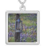 N.A., USA, Texas, Llano, Blue Lantern and Custom Necklace