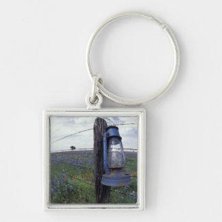 N.A., USA, Texas, Llano, Blue Lantern, Oak tree Keychain