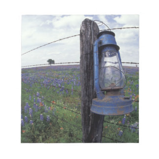 N.A., USA, Texas, Llano, Blue Lantern, Oak tree Notepad