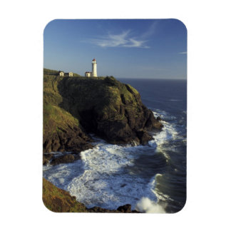 N.A., USA, Washington, Cape Disappointment State Magnet