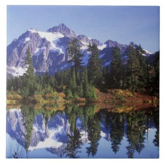 N.A., USA, Washington, Mt. Baker & Snoqualmie Tile