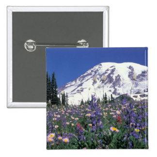 N.A., USA, Washington Mt. Rainier and Pins