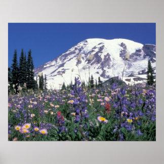 N.A., USA, Washington Mt. Rainier and Poster