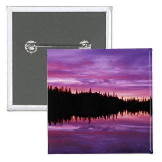 N.A., USA, Washington, Mt. Rainier National 2 Pinback Buttons