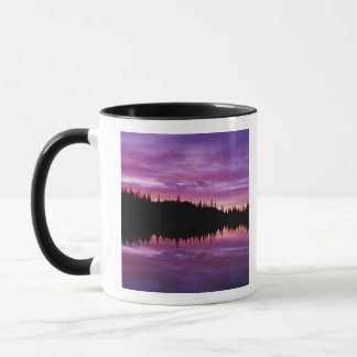 N.A., USA, Washington, Mt. Rainier National 2 Mug
