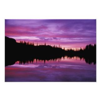 N.A., USA, Washington, Mt. Rainier National 3 Photograph