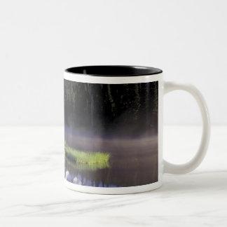 N.A., USA, Washington, Mt. Rainier National 5 Two-Tone Coffee Mug