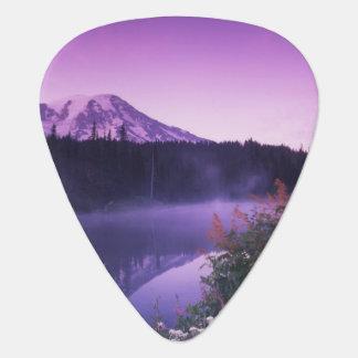 N.A., USA, Washington, Mt. Rainier National Guitar Pick