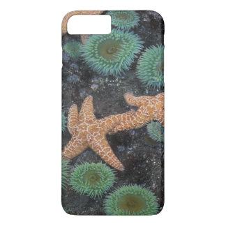 N.A., USA, Washington, Olympic National Park, 2 iPhone 8 Plus/7 Plus Case
