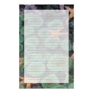 N.A., USA, Washington, Olympic National Park, 2 Stationery