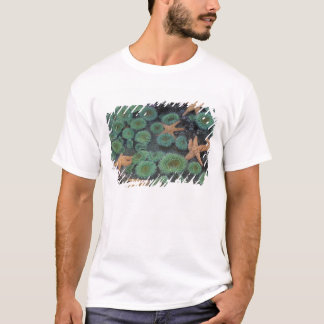 N.A., USA, Washington, Olympic National Park, 2 T-Shirt