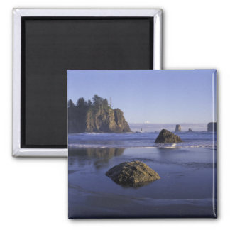 N.A., USA, Washington, Olympic National Park, 3 2 Inch Square Magnet