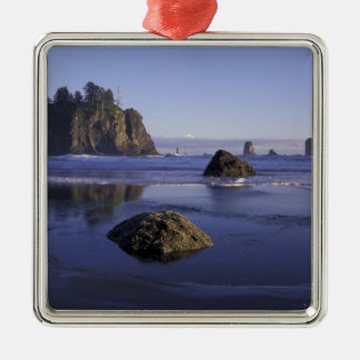 N.A., USA, Washington, Olympic National Park, 3 Metal Ornament