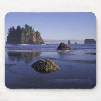 N.A., USA, Washington, Olympic National Park, 3 Mousepads