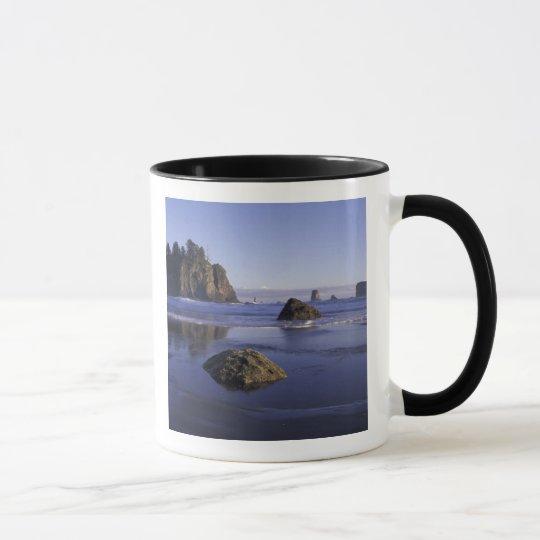 N.A., USA, Washington, Olympic National Park, 3 Mug
