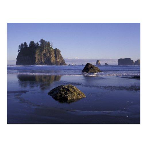 N.A., USA, Washington, Olympic National Park, 3 Postcards