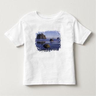 N.A., USA, Washington, Olympic National Park, 3 Toddler T-shirt