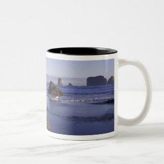 N.A., USA, Washington, Olympic National Park, 3 Two-Tone Coffee Mug