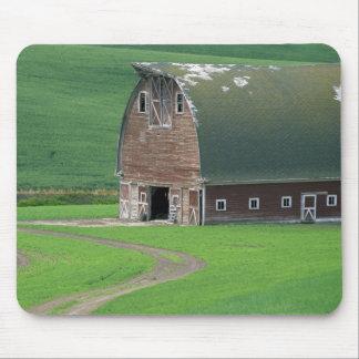 N.A., USA, Washington, Whitman County. Old Mouse Pad