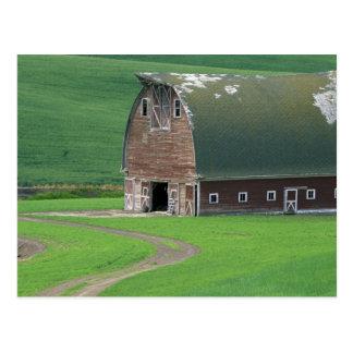 N.A., USA, Washington, Whitman County. Old Postcard