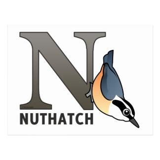 N is for Nuthatch Postcard