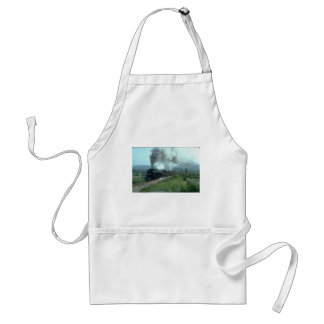N&W 2-6-6-4 Articulated Aprons