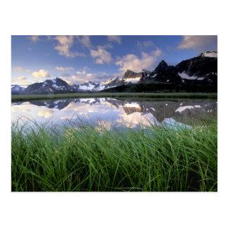 NA, Canadá, Alberta, valle de Tonquin. Jaspe Tarjetas Postales