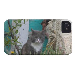NA, Canadá, Isla del Principe Eduardo, Malpeque 2 iPhone 4 Case-Mate Cárcasa