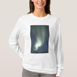 NA, Canadá, Manitoba, aurora boreal de Churchill, Playera