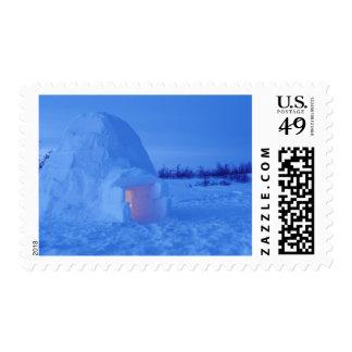 NA, Canadá, Manitoba, Churchill. Iglú ártico Sellos