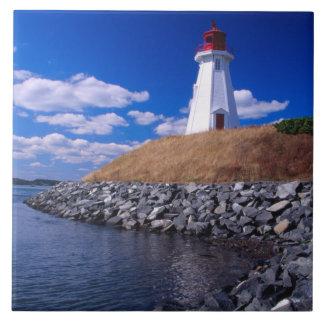 NA, Canada, New Brunswick, Campabello Island. Large Square Tile